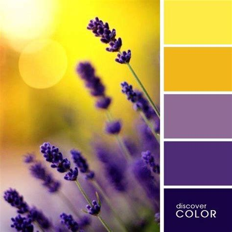 best 20 purple palette ideas on