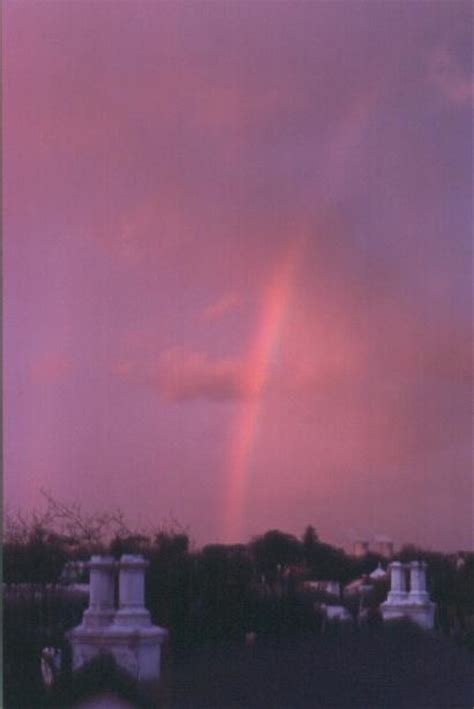 Rainbow Pink gordo s gallery of rainbows page 2