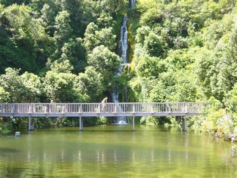Garden Hawkes Bay The Mega Nz Piccy Photo Thread New Zealand