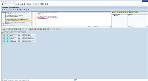 sap abap tutorial with screenshots a complete guide to opensql statements step by step