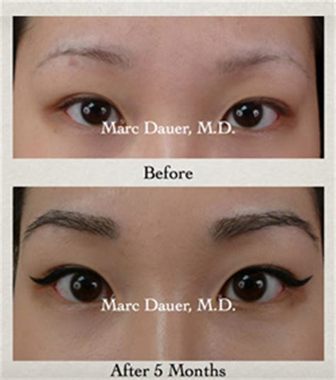 rough eyebrow hairs eyebrows male vs female male models picture