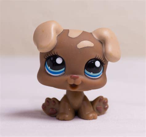 lps puppies littlest pet shop lps brown puppy 1052 ebay