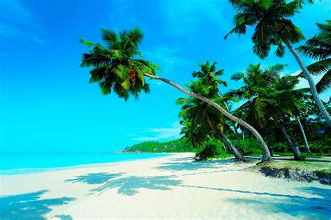 imagenes de maya karunna encuerada qu 233 ver en playa del carmen m 233 xico 191 tu lo sabes