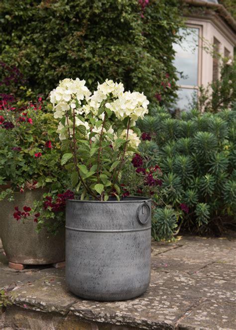 buy a planter buy metal planter