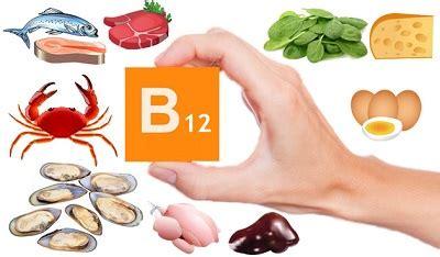 vitamine b12 alimenti vitamina b12 donde se encuentra