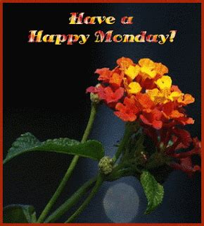 happy monday sms wallpapers quotes mms wishes images hindi sms good morning sms good