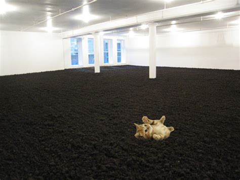 new york earth room the return of the feline repressed