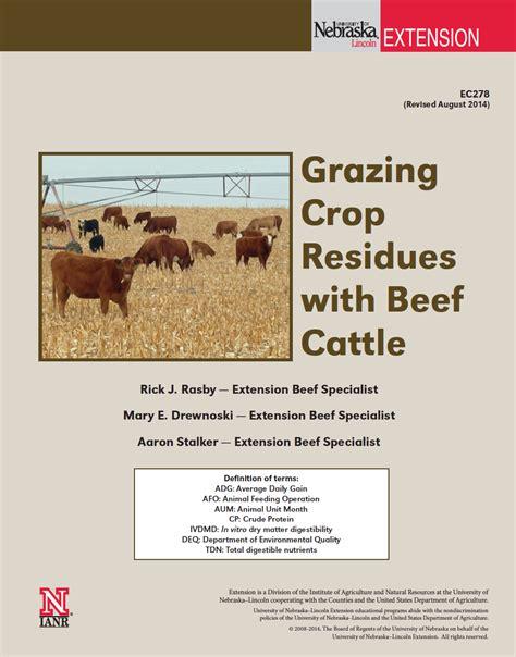 grazing crop residue  beef cattle nebraska extension