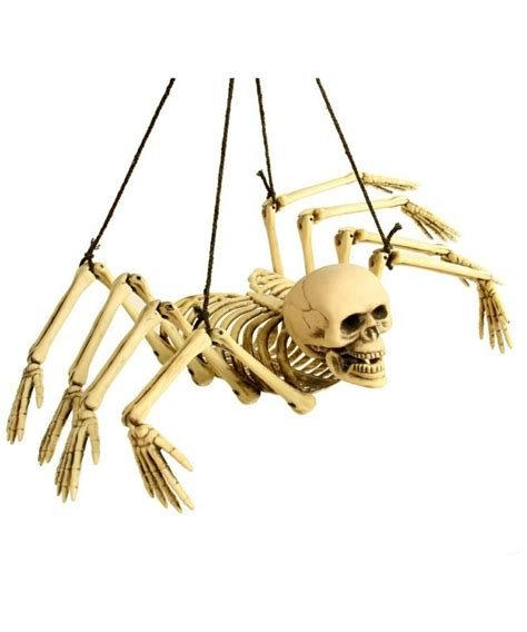 Skeleton Decoration by Skeleton Spider Decoration Decoration