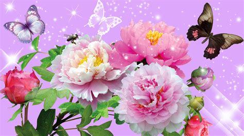 summer flowers wallpaper beautiful desktop wallpapers 2014 flowers hd wallpapers