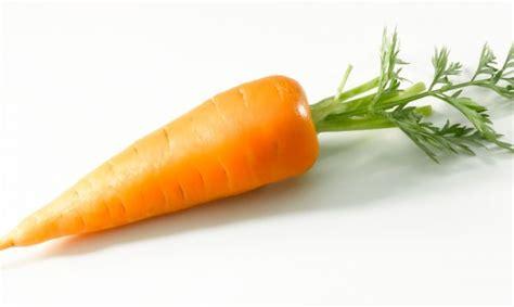 imagenes infantiles zanahoria cultivar zanahorias hogarmania