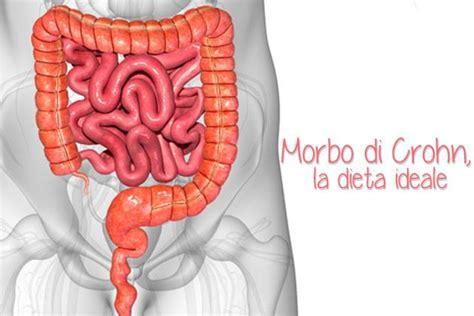 morbo di crohn alimentazione dieta morbo di crohn la dieta ideale apparato digerente