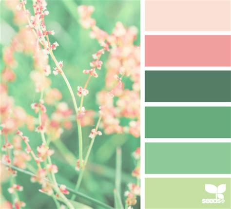 Colors From Nature | choosing colour the colour wheel design seeds and dulux