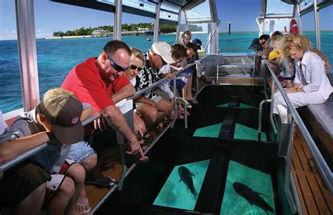 glass bottom boat whitsunday islands ballooning reef great barrier reef day trips tours