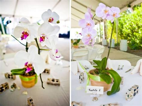 orchids centerpieces wedding ideas simple and inexpensive orchid wedding centerpieces budget brides guide a wedding
