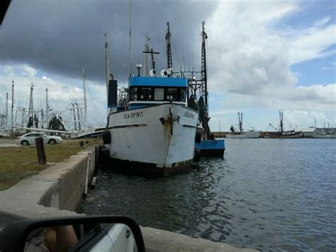 party boat port aransas shrimp boat port aransas tx gulf coast pinterest