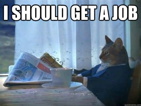 Get A Job Meme - i should get a job morning realization newspaper cat