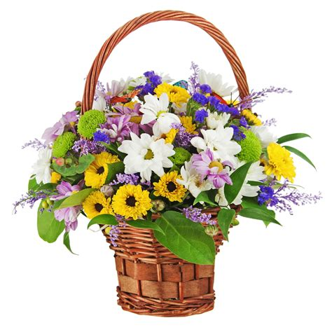 Floral Arrangements Delivery by Gift Baskets Houston Tx Flower Arrangement Delivery