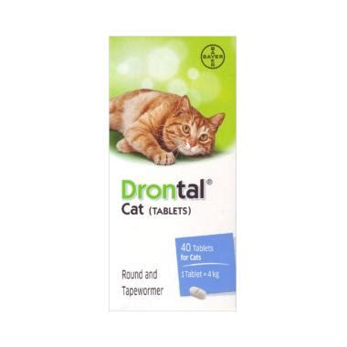 Obat Cacing Drontal blibli pet festival blibli