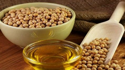 healthy fats soybean a list of healthy foods to eat for improving overall