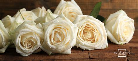 imagenes de flores blancas significado rosas blancas 191 cu 225 l es su significado verdissimo