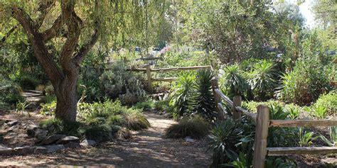tree farms near sacramento spotlight sacramento visit california