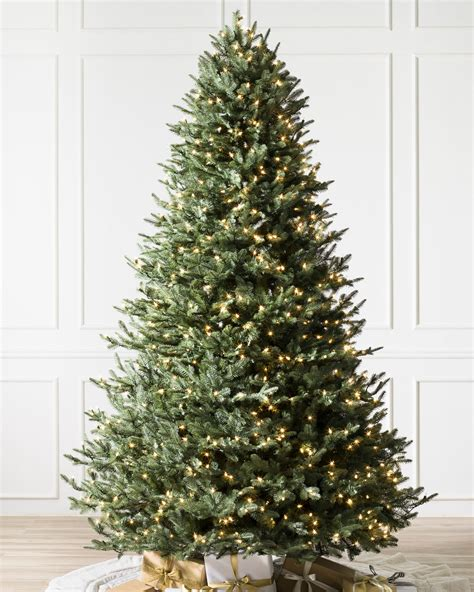 balsam christmas trees sale frosted fraser fir foliage