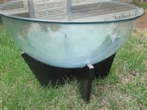 Fish Bowl Coffee Table Vintage Timber And Glass Coffee Table Terrarium Or