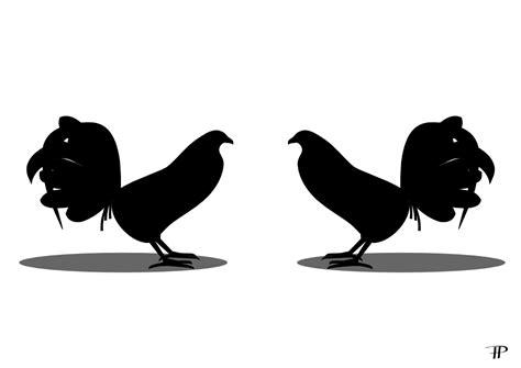 pelea de gallos en cupey san juan pr foto ang233lica allen peleas de gallos pelea png newhairstylesformen2014 com