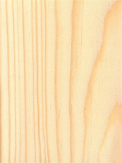 Spruce Pine   The Wood Database   Lumber Identification