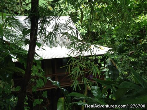 cocoa cottages dominica cocoa cottage trafalgar dominica hotels resorts