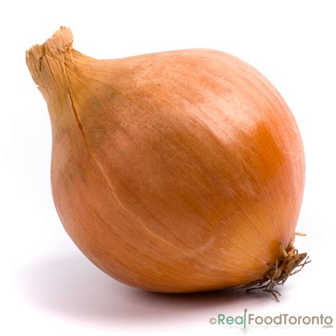 Buy Gift Cards In Bulk And Save - organic onion yellow bulk