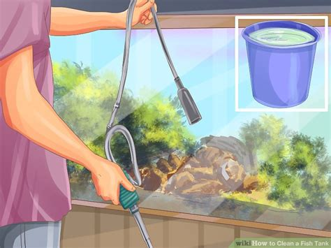 2 easy ways to clean a fish tank wikihow
