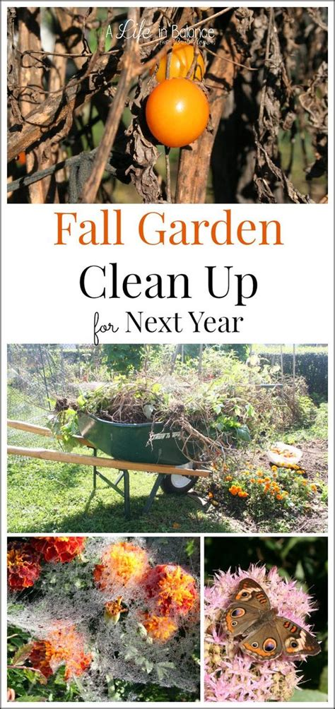 fall garden preparation in the fall the fall and garden on