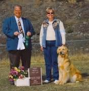rottweiler club of alaska show news