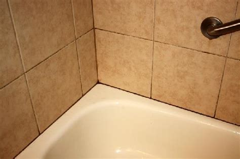 Removing Mould From Shower Grout by Remove All Stains How To Remove Mold From Shower Grout