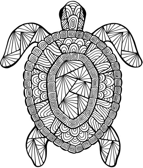 for adults coloring pages turtle coloring pages