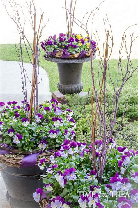 How To Create A Gorgeous Pansy Outdoor Planter In Four Pansy Garden Ideas