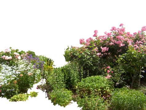 flowered garden png 01 by hermitcrabstock on deviantart