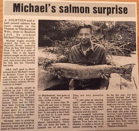 thames river salmon salmon thames anglers conservancy