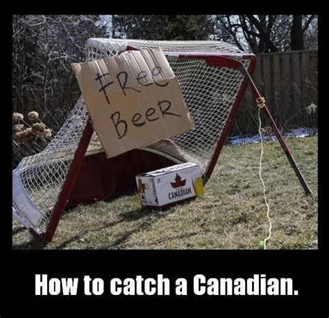 how to catch a free beer canadian humor