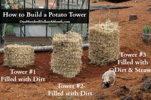 diy how to build a potato tower one hundred dollars a month