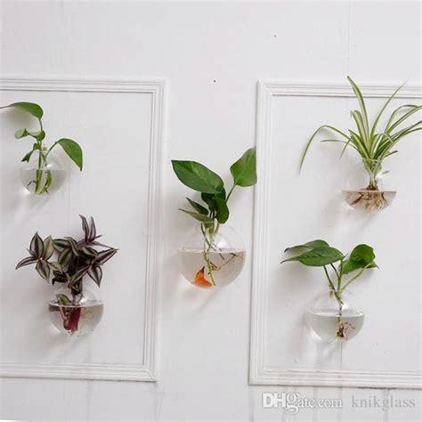 crystal glass wall plantershanging wall air plants bread