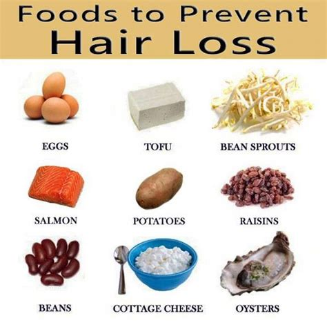 10 superfoods to prevent hair loss top 10 home remedies foods that prevent balding 28 images hair growth 10