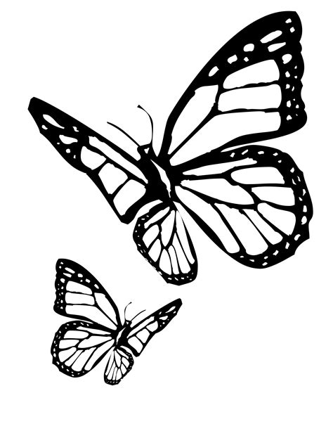 coloring pages of monarch butterflies butterfly coloring pages
