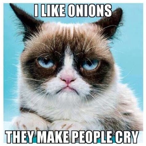 Make A Grumpy Cat Meme - grumpy cat i like onions they make people cry grumpy