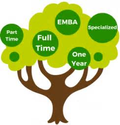 Opt Time For Mba by Comparing Your Mba Options
