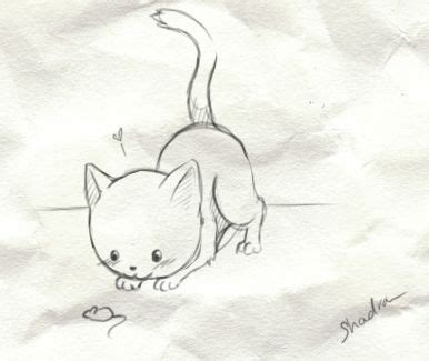 doodle cat drawings discover and save creative ideas