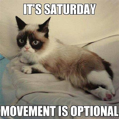 It S Saturday Meme - happy saturday quotes funny quotesgram
