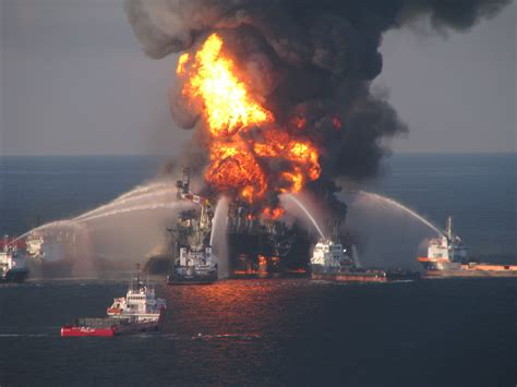 deepwater horizon archives defenders of wildlife blog